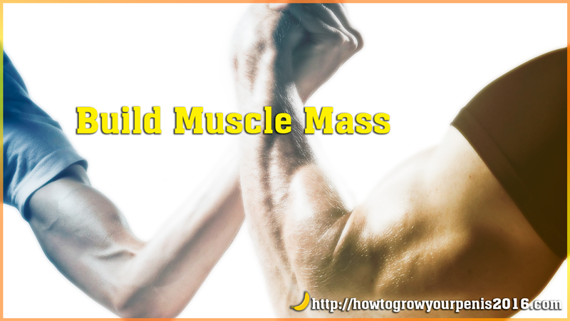 Build muscle mass