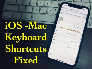 iOS 12 Keyboard Shortcuts Not Working on iPhone X, iPhone 8/7/6 (Plus)