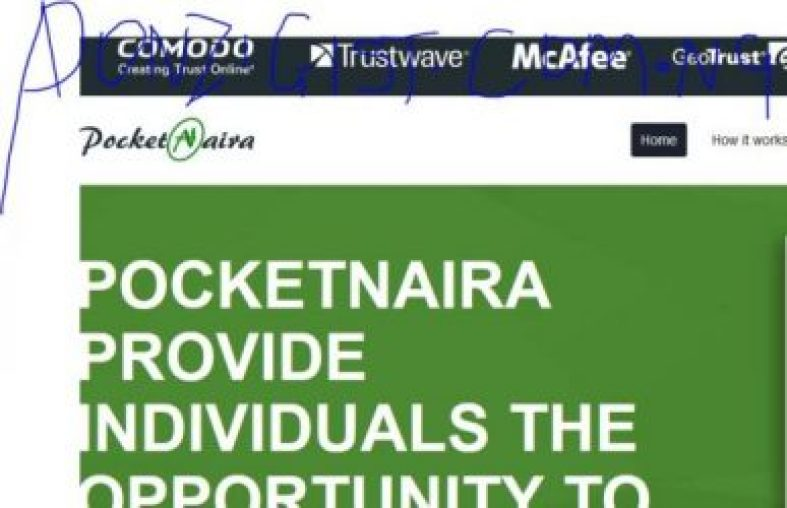 PocketNaira.com - Ponzi that Pays 100% of Investment
