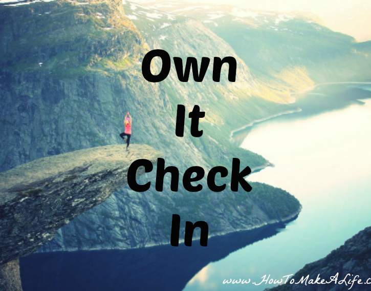 Own It Check In