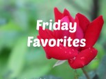 Friday Favorites - End of April