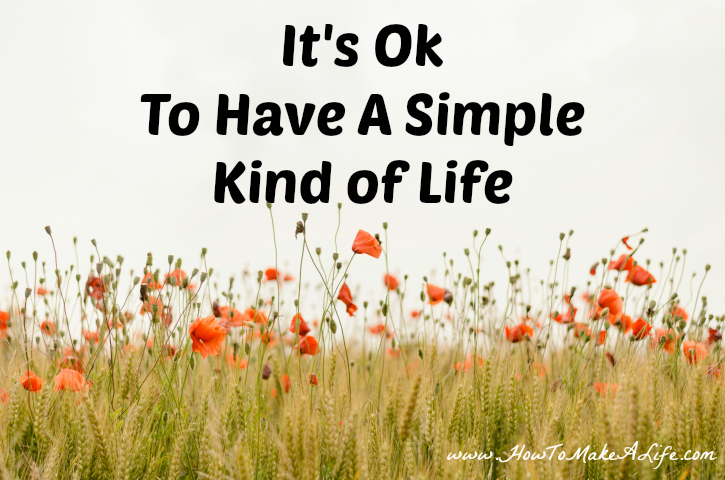 It's Ok To Have A Simple Kind of Life