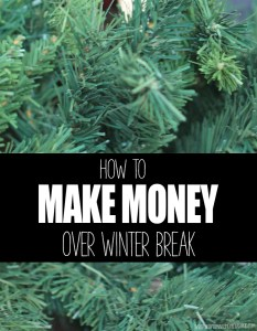 HOW TO MAKE MONEY OVER WINTER BREAK AS A KID