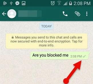 message_sent_check_mark_WhatsApp