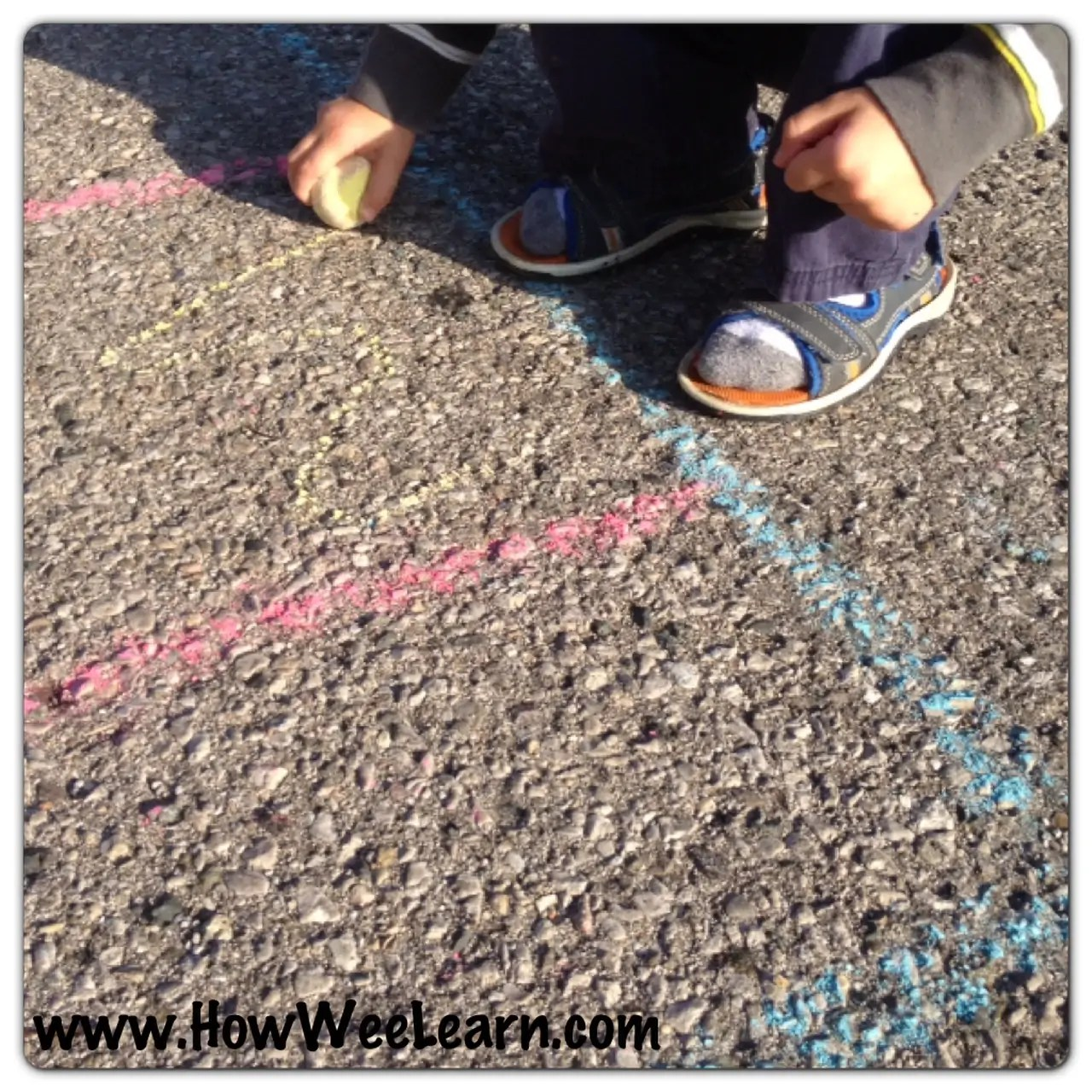 Preschool Math Games Graphing With Nature