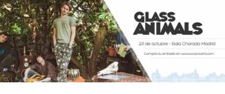 Ir al evento: GLASS ANIMALS en Madrid