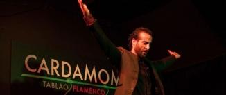 Ir al evento: Suma Flamenca 2014 en CARDAMOMO