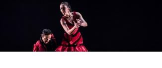 Ir al evento: Suma Flamenca 2014: 23º CERTAMEN DE COREOGRAFÍA DE DANZA ESPAÑOLA Y FLAMENCO