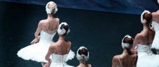 Ir al evento: EL LAGO DE LOS CISNES Ballet de Moscú