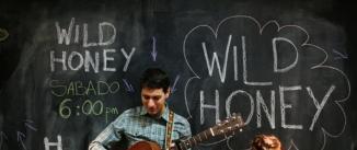 Ir al evento: Conciertos de La Caja de Música WILD HONEY