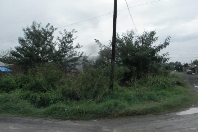 Piden al Municipio que intimen a limpiar terrenos privados