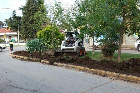 Realizaron trabajos en los canteros de Avenida 29