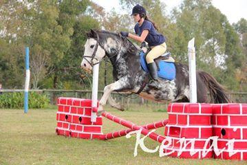 17 Equitacion