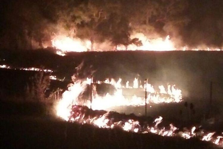 Monte de acacios y siembra se incendiaron en Ruta 5 Km 110