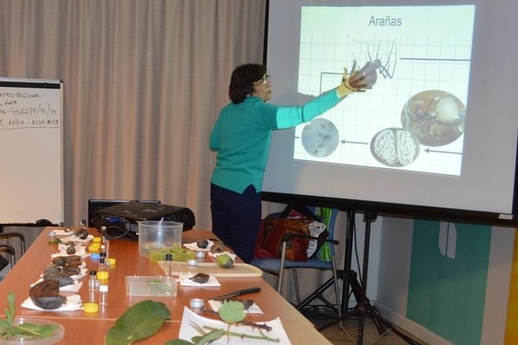 El Senasa realizó jornada sobre plagas y control biológico en la huerta