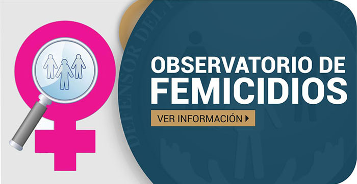 Defensor del Pueblo de Nación relevó 281 femicidios en 2018