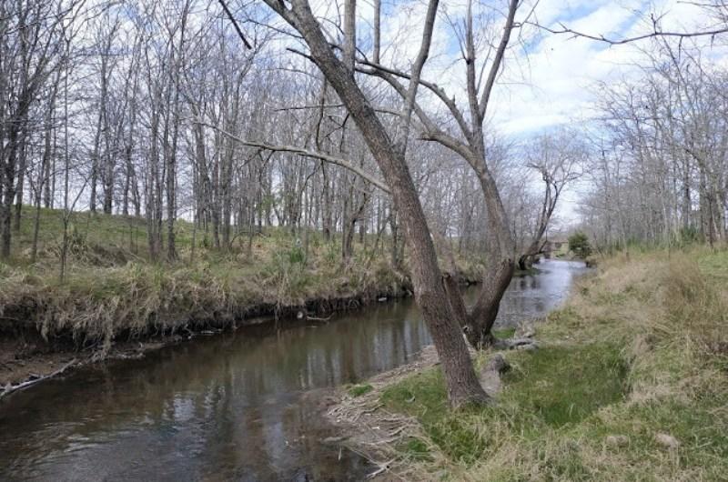 ¿Por qué defendemos al arroyo Balta ?