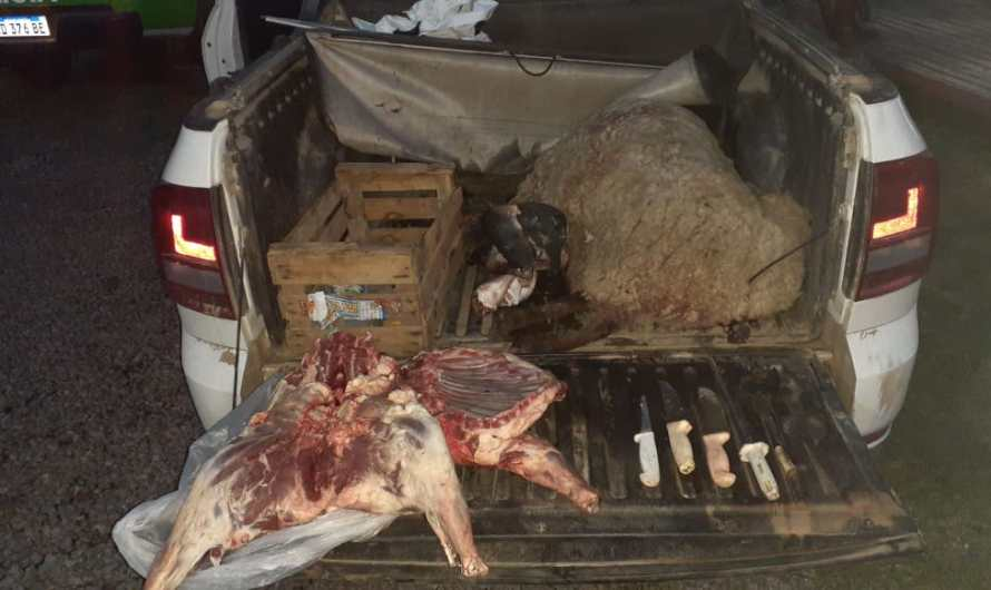 Policía Rural detiene tres masculinos dedicados al robo de animales