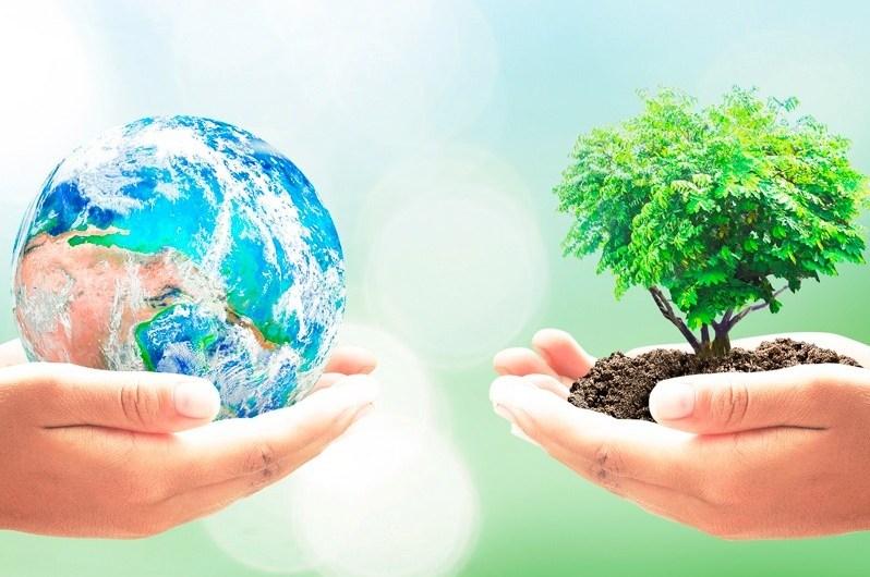 Lo sostenible como una alternativa para las empresas argentinas