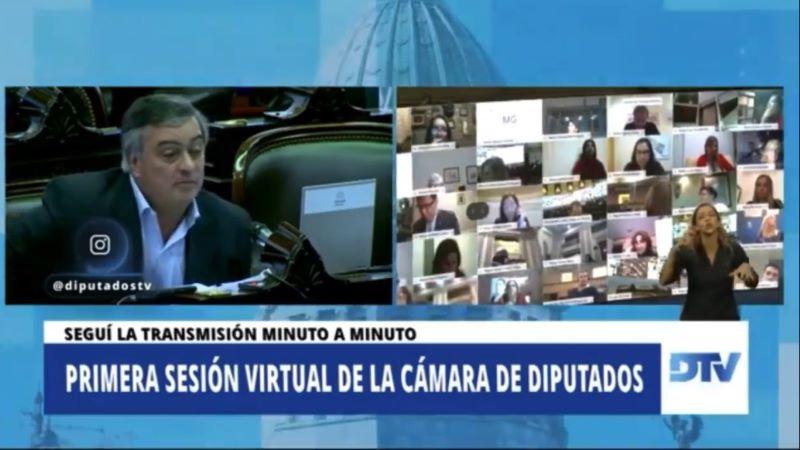 Intervención de Carlos Selva en la sesión virtual de Diputados