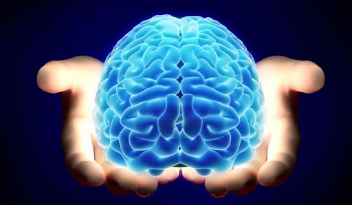Día Mundial del Cerebro: cómo mantenerlo saludable y activo