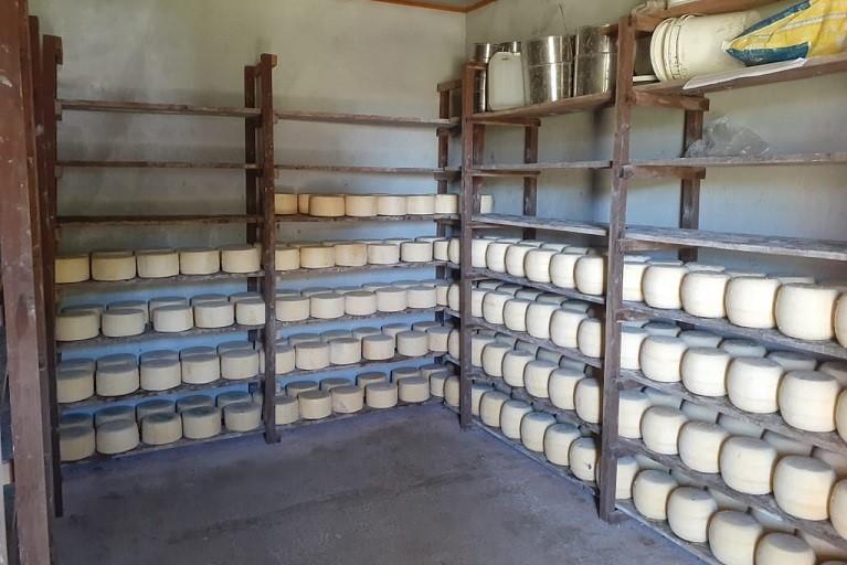 Entró en vigencia la norma para establecimientos lácteos de elaboración artesanal