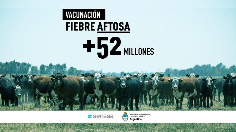 Más de 52 millones de bovinos vacunados contra la aftosa en la primera campaña 2021