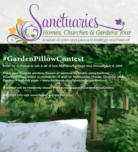 sanctuaries contest