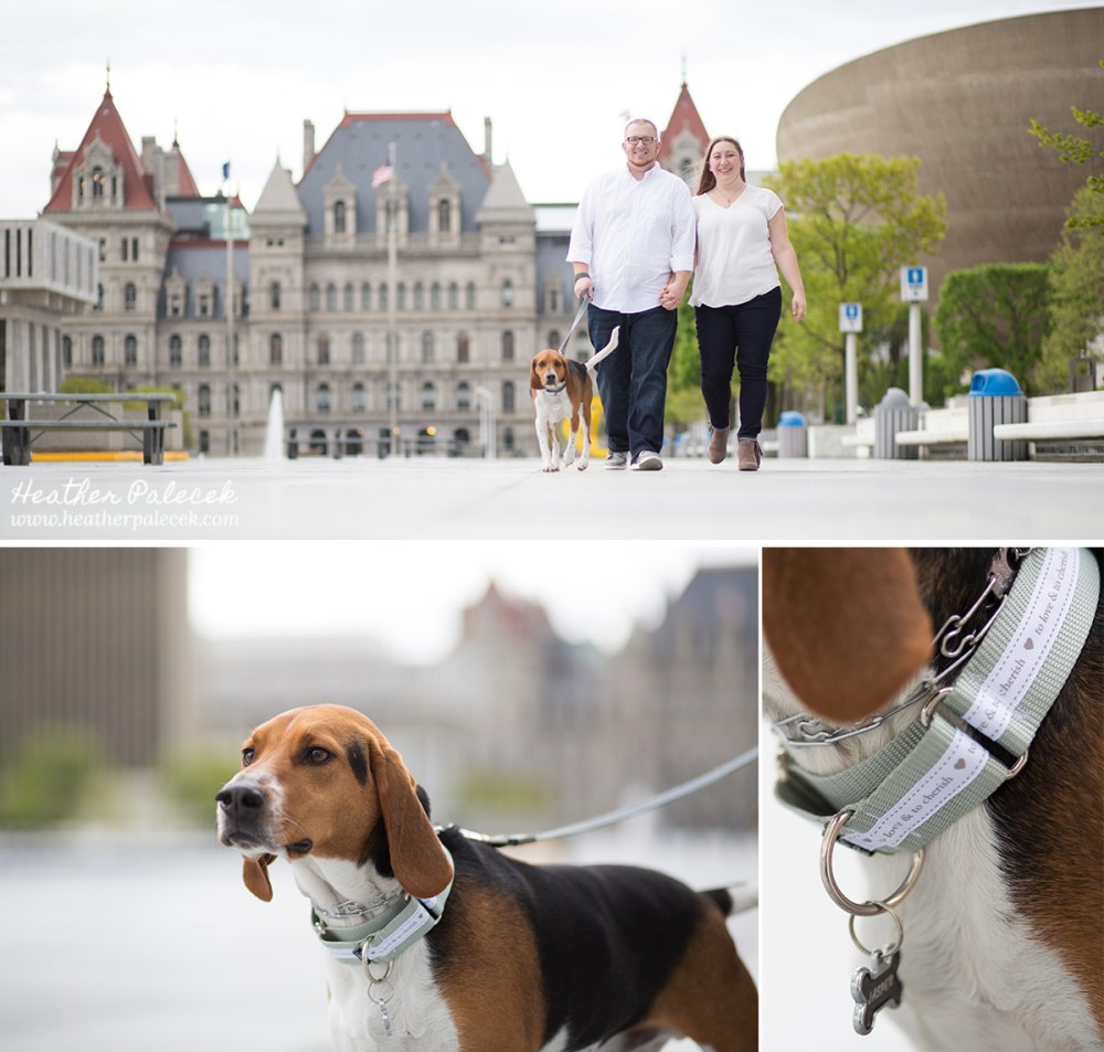Special Dog Collar for Engagement Session