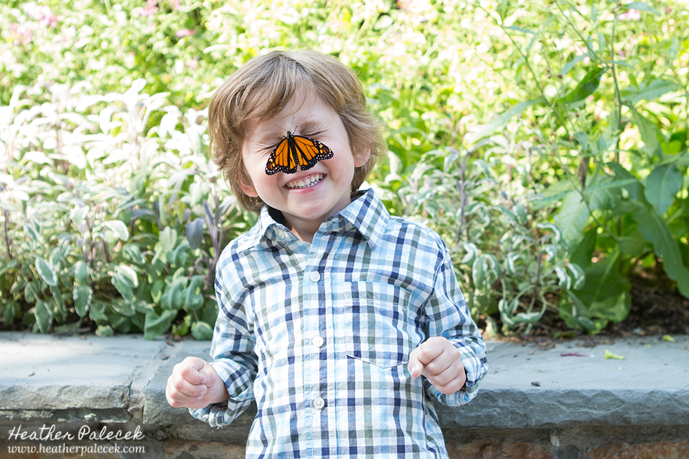 Butterfly Release Family Photos