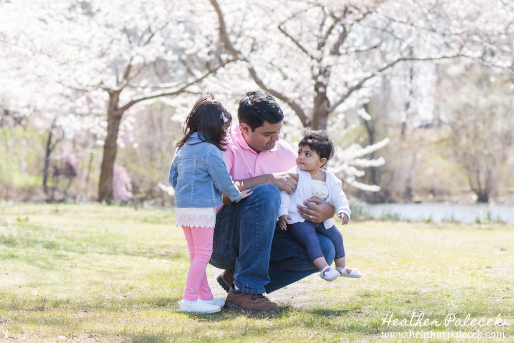 Cherry Blossom Family Portraits   Ewing, Central NJ Family Portrait