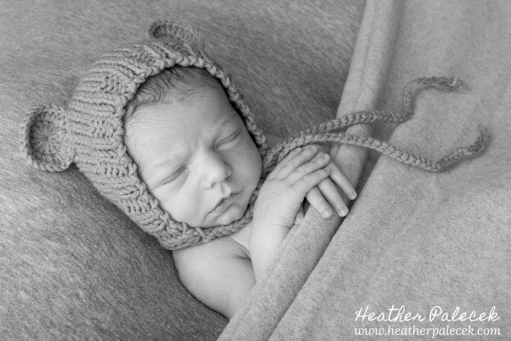 newborn boy portrait with bear ears hat