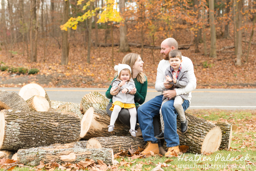 family sits on pile of logs at Fall Family Photo Shoot