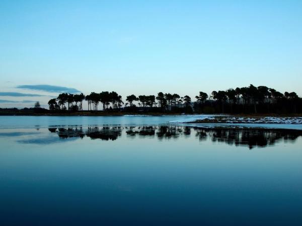 Море, пальмы, берег обои для рабочего стола, картинки ...