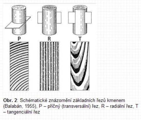 rezy-drevem-zdroj-www_vscht_cz