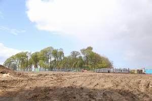 Jones' Hill Wood | Update 25.05.2021