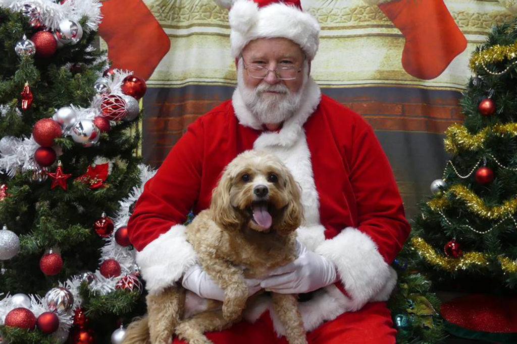Christmas Photos With Santa Humane Society London Amp Middlesex