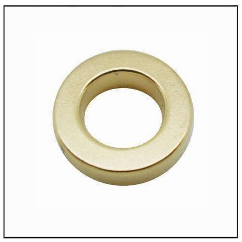 Ring Gold Coating Neo Magnets
