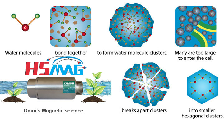 Magnetic Resonance Process System of Magnetized Water