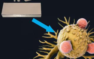 Powerful magnets can kill cancer cells