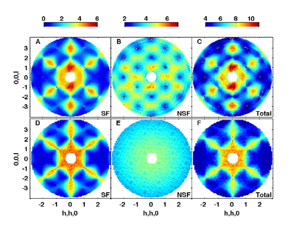 Magnetic monopoles discovered by LCN Scientists