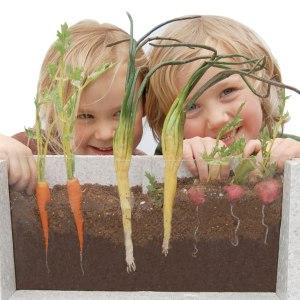 Root-Vue Farm Underground Garden