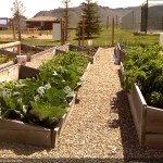 Grand Community Gardens