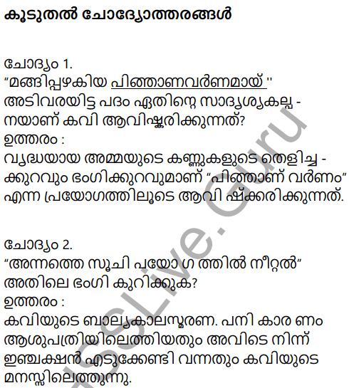 Adisthana Padavali Malayalam Standard 10 Solutions Unit 1 Chapter 3 Ammathottil 32