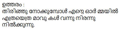Adisthana Padavali Malayalam Standard 10 Solutions Unit 2 Chapter 1 Kochu Chakkarachi 25
