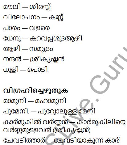 KeralaPadavali Malayalam Standard 9 Solutions Unit 5 Chapter 1 Ambadiyilekku 19