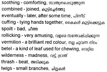 Kerala Syllabus 10th Standard English Solutions Unit 5 Chapter 3 The Castaway 15