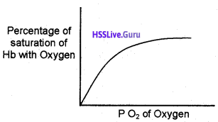 Plus One Zoology Chapter Wise Questions and Answers Chapter 6 Breathing and Exchange of Gases - 23