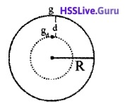 Plus One Physics Chapter Wise Questions and Answers Chapter 8 Gravitation - 10