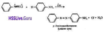 Plus Two Chemistry Notes Chapter 13 Amines 32